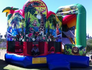 Inflateable Rides and Slides