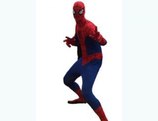 Spider Man 321 X 248